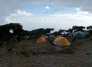 ハイキャンプ